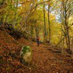 """El Conselh Generau presenta la campanya de turisme """"Val d'Aran, la terra dels mil colors"""""""